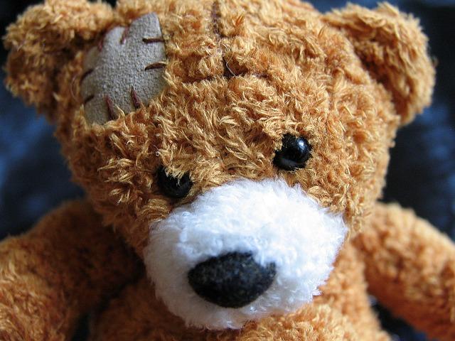 medvídek se záplatou